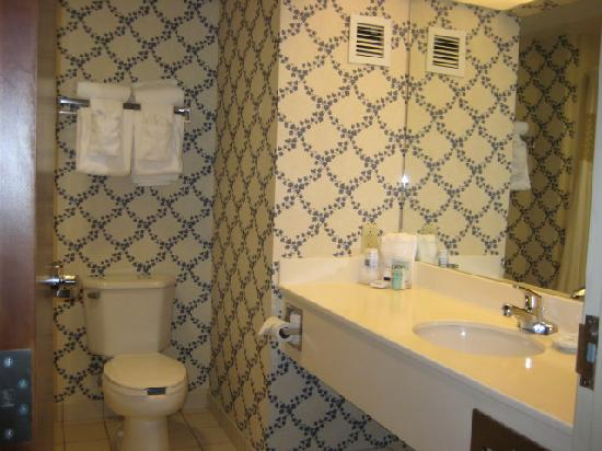 Hampton Inn Rehoboth Beach: bathroom