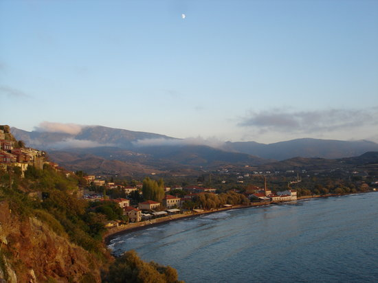 Lesbos, Greece: Olive Press view