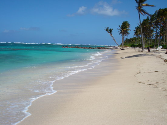 Nevis: Beach at Nisbet