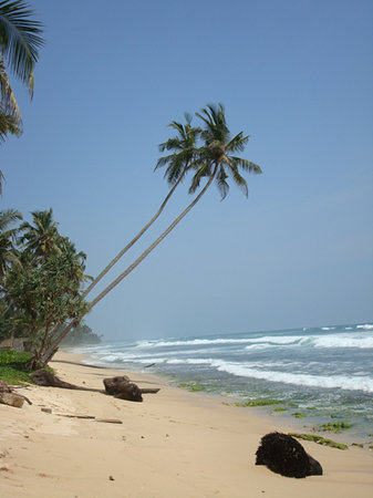 Galle, Шри-Ланка: beach infront of the villa