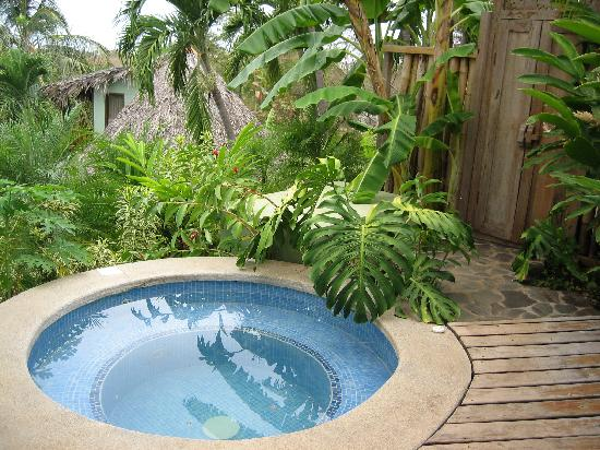 1000 images about pools plunge pool on pinterest plunge for Garden plunge pool