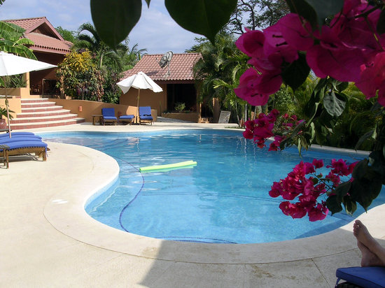Ritmo Tropical: pool