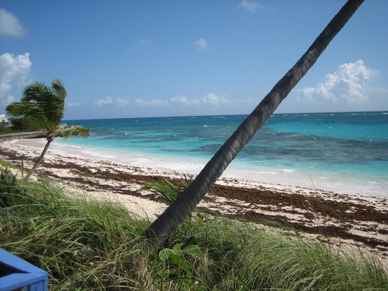 Great Abaco Island: beach in front of hotel