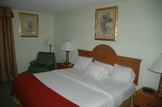 Holiday Inn Express Madison: King room