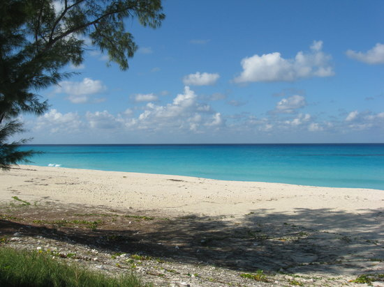Bimini: Beach on the west side of Bimin the water color is wonderful