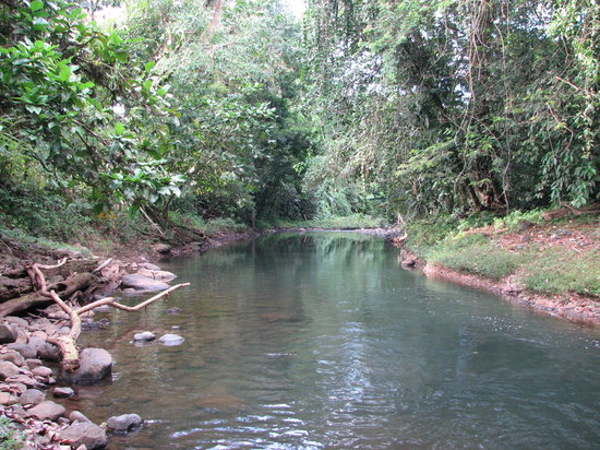 Sarapiqui, Costa Rica: Small river near hotel. You can swim here in the wet season