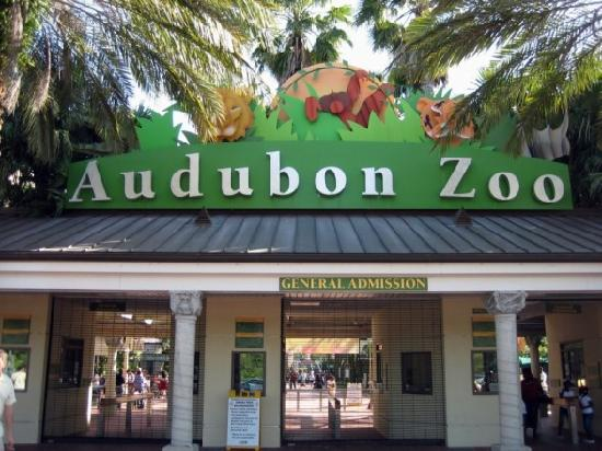 the audobon zoo