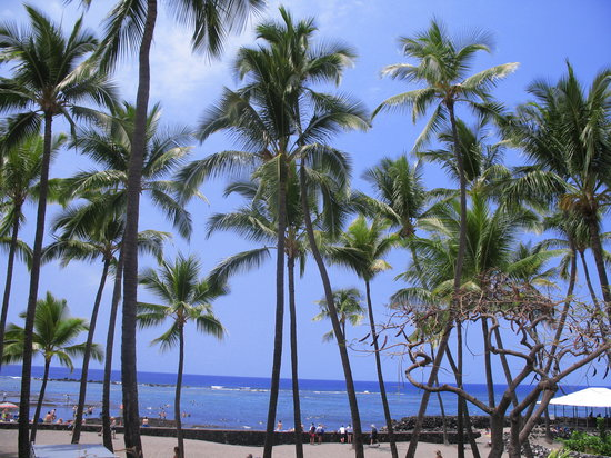 Kailua-Kona, Hawaje: Beautiful Beaches & Palm Trees