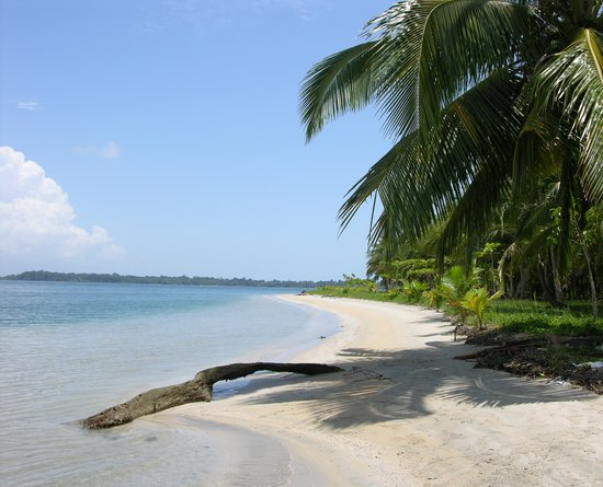 Bocas Town, : playa de las estrellas
