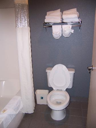 Quality Suites Albuquerque - Gibson Blvd : Clean, modern bathroom 