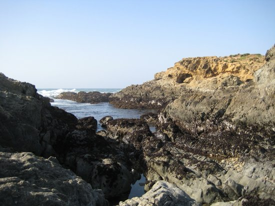 Fort Bragg, Californië: Glass Beach rocks