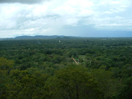 ,  : A view from half way up Sigiriya rock