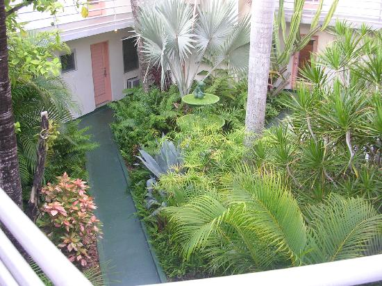 The courtyard Picture of El Patio Motel Key West