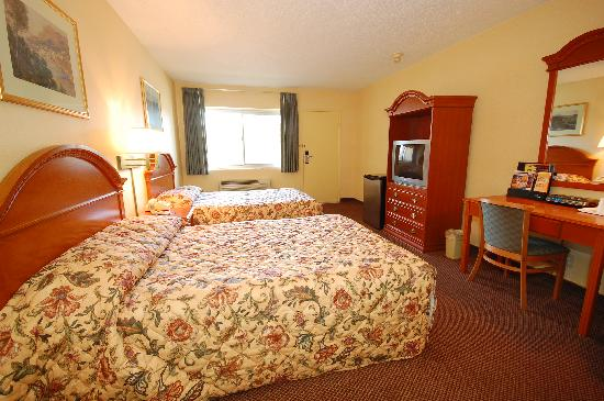 Econo Lodge at the Falls: Our Room