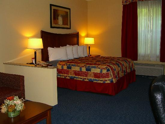 Comfort Suites Airport: Bed