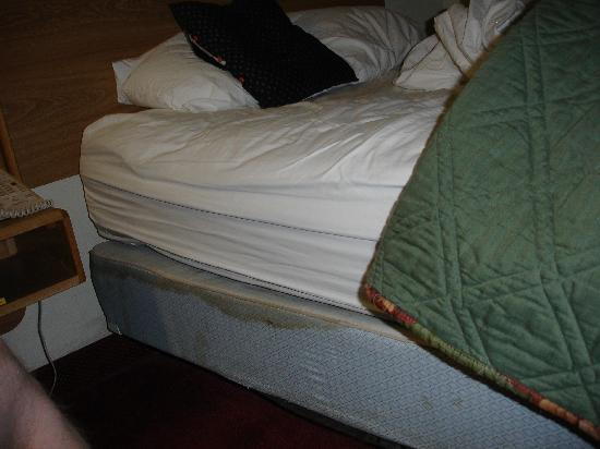 Sleep Inn Mount Pleasant: schmutziges Bett (Matratze)