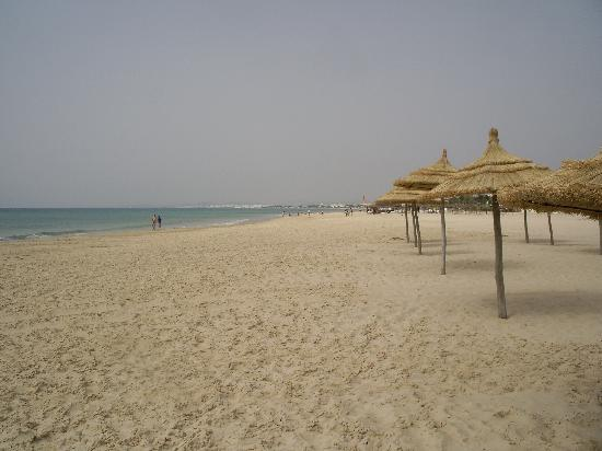 One of these was to Hammamet, Tunisia. I looked for info, reviews of H but