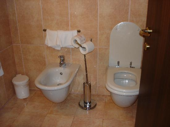 Ca' Doge: All hotel bathrooms have one--a bidet!