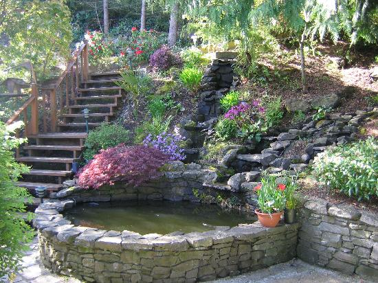 Fish Pond Picture Of Southwind Guest House Spa