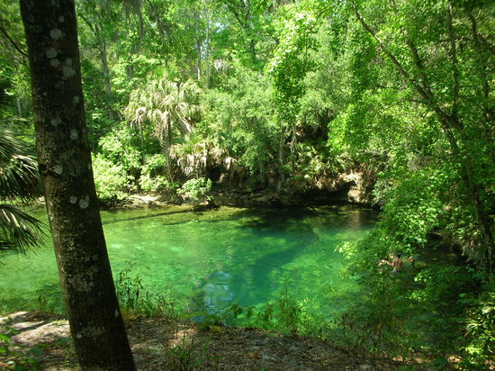 Blue Spring State Park