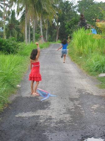 Klub Kokos: Flying the kites in Ubud