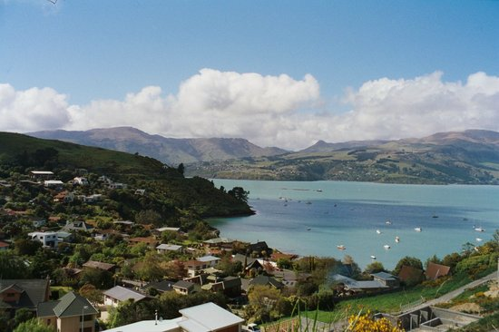 our view from the bach over Akaroa