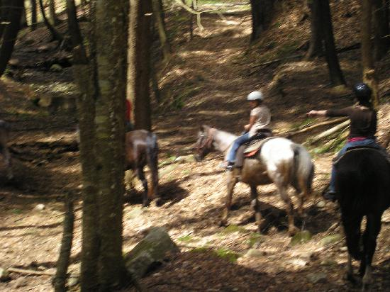 1000 Acres Ranch Resort: riding in the woods