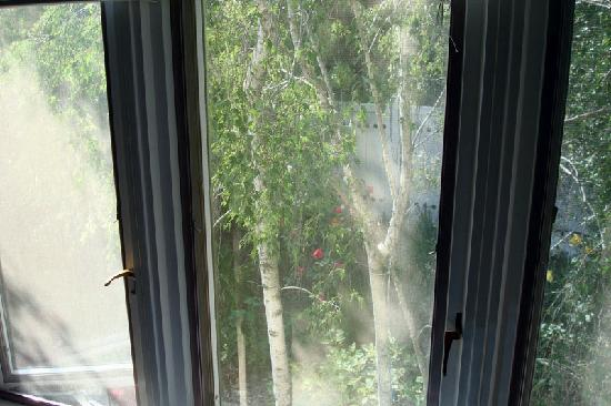 Point Reyes Country Inn & Stables: Room #4 - another set of windows looking into neighbor's private yard