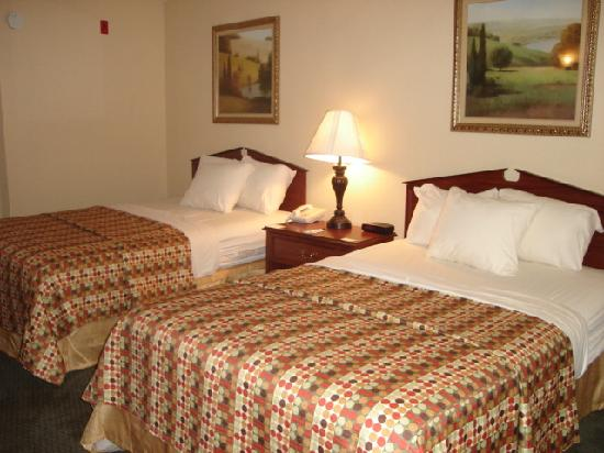 Quality Inn Decatur: This is the standard room we stayed in