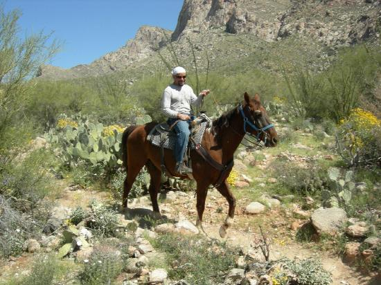 Mon Ami Bed and Breakfast: Patty Cakes the Cowboy!  Riding in Tucson.