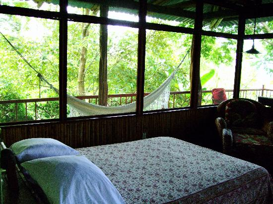 Iguana Lodge: Our room with hammock balcony