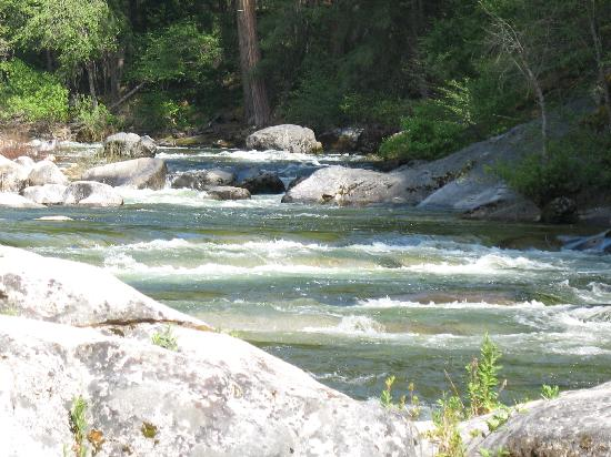 Wawona Campground: the merced river near our site