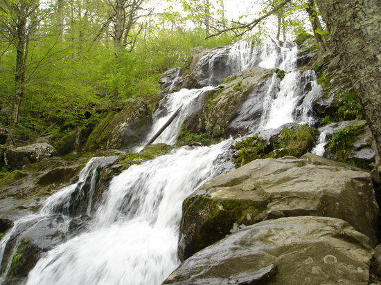 Shenandoah National Park, เวอร์จิเนีย: Dark Hollow Falls