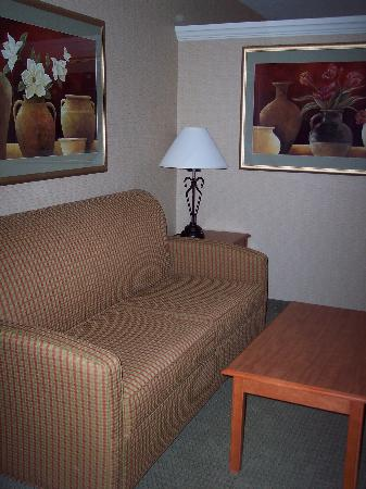 Comfort Inn & Suites: Our suite