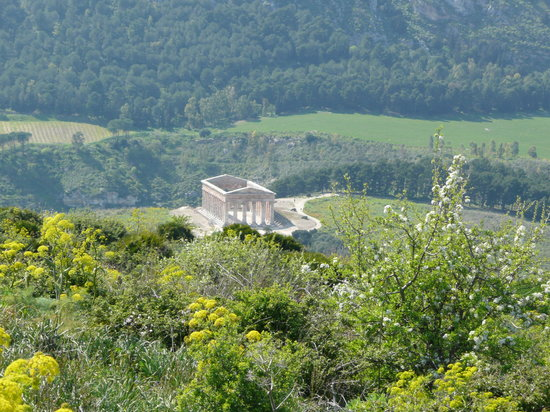 Temple of Segesta (Tempio Greco)