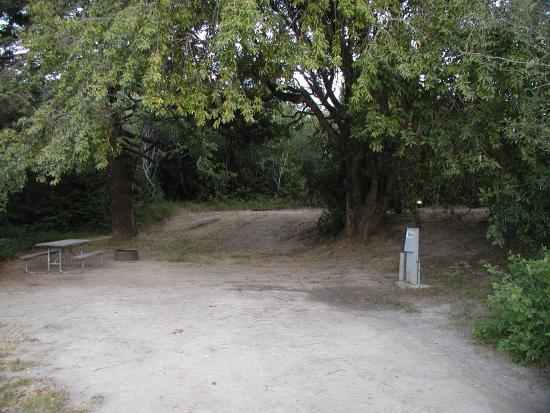 Photo of Casini Ranch Campground Jenner
