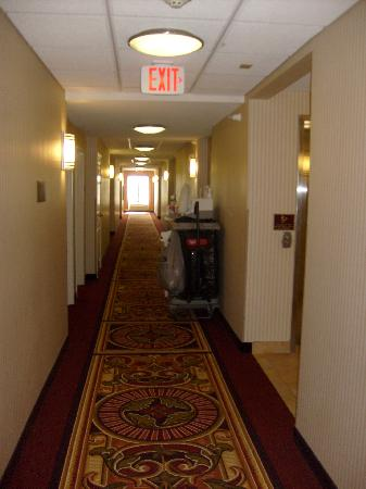 Holiday Inn Express Longmont: Hall