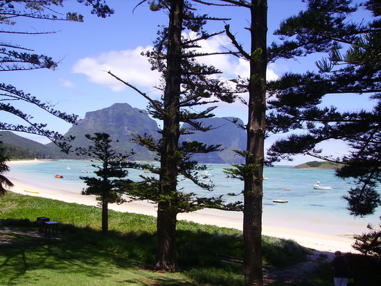 Lord Howe Island, : Lagoon Beach, Lord Howe
