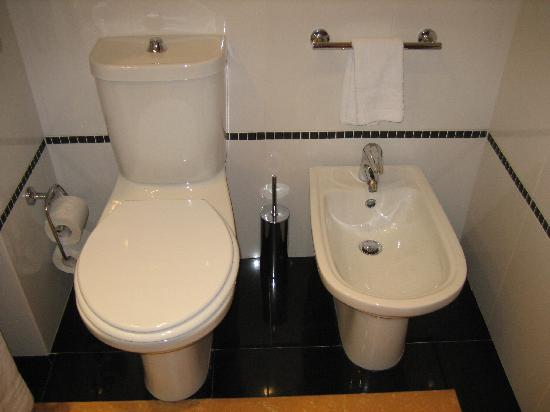 [Image: bidet-and-toilet.jpg]