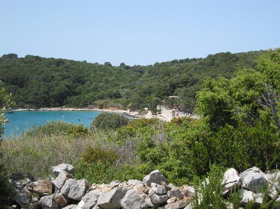 Palmizana: View over the cove from the top of the island