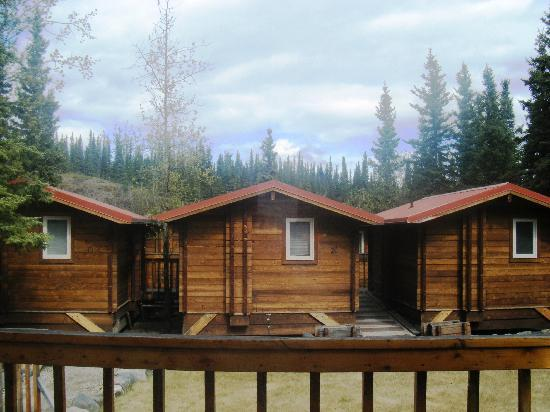 Cute quaint rustic yet comfortable cabins picture of for Denali national park cabins