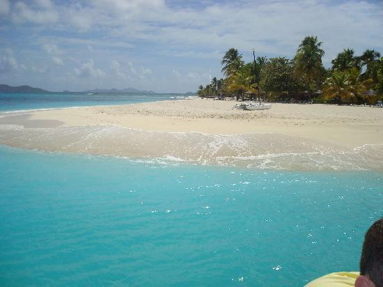 Coyaba Beach Resort: grenadines palm island