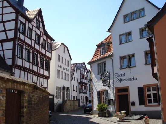 Bad muenstereifel 2 11 may 2008 picture of north rhine for Park hotel euskirchen germany