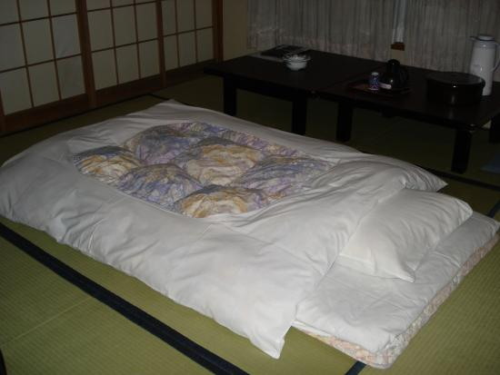 Nogamihonkan Ryokan