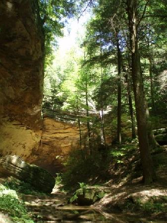 Logan, OH: Ash Cave - nearby and wheelchair accessible