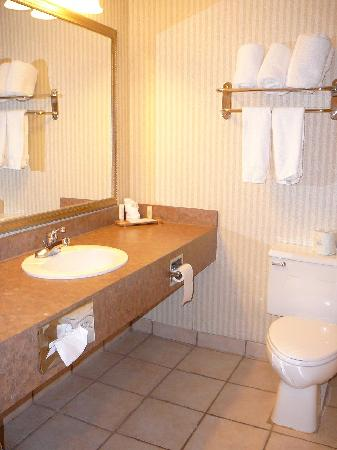BEST WESTERN PLUS Seville Plaza Hotel: Bathroom is all new, tastefully done