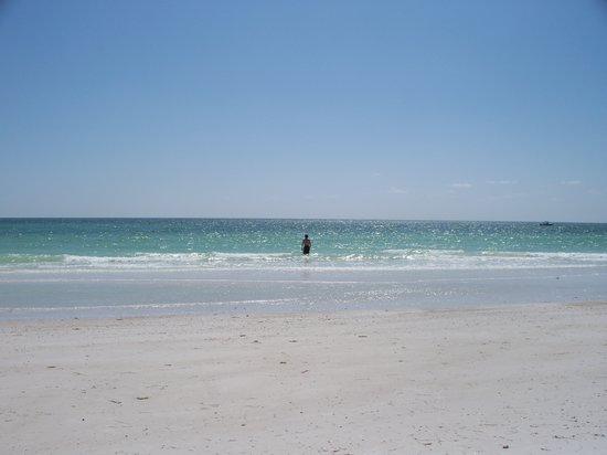 Dunedin, Флорида: honeymoon island -awesome beach