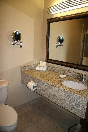 Holiday Inn Hotel & Suites Salt Lake City-Airport West: Bathroom