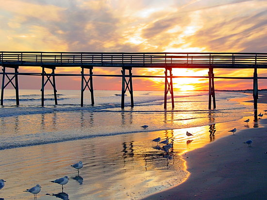Pet Friendly Hotels Near Sunset Beach Nc