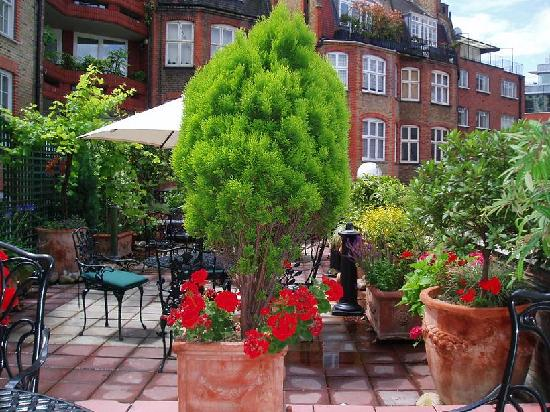 Pictures of Searcy's Roof Garden Rooms, London - Traveler Photos ...